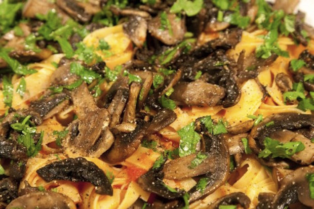 tagliatelle with mushrooms - tagliatelle alla boscaiola close up