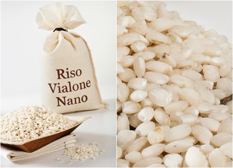 Εθιστικό ιταλικό ριζότο – Μέρος ΙΙ - ρύζι Vialone nano