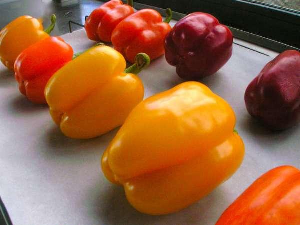 Πολύχρωμες ψητές πιπεριές