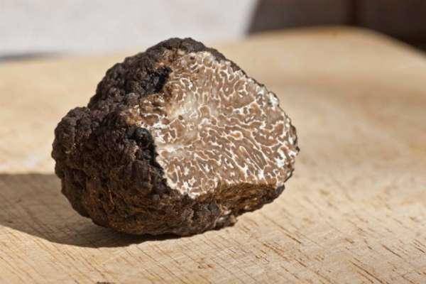 μαύρη τρύφα - συνταγή σπαγγέτι με τρούφα