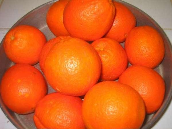 πορτοκάλια Λακωνίας