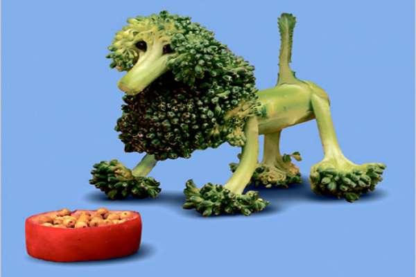 saxton freymann: food art