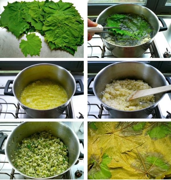 how to cook greek dolmades - vine leaves stuffed with rice