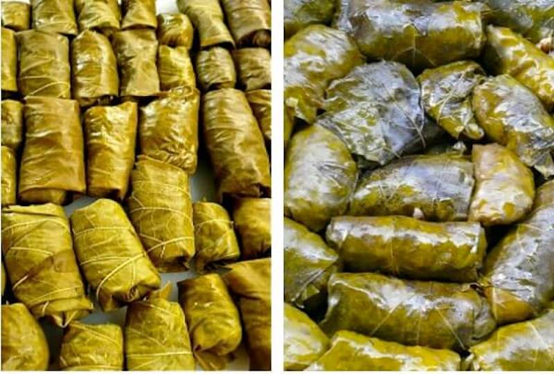 Lego size, vegan small Greek dolmades made with vine leaves stuffed with rice