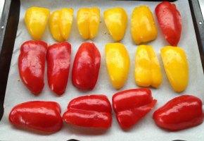 κόκκινη τερίν με ψητά λαχανικά: πιππεριές