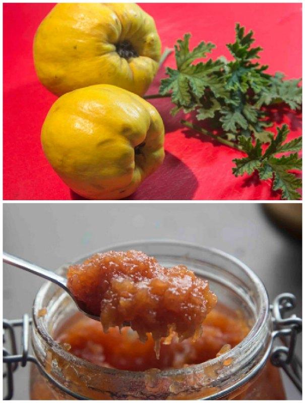 marmelada kydoni