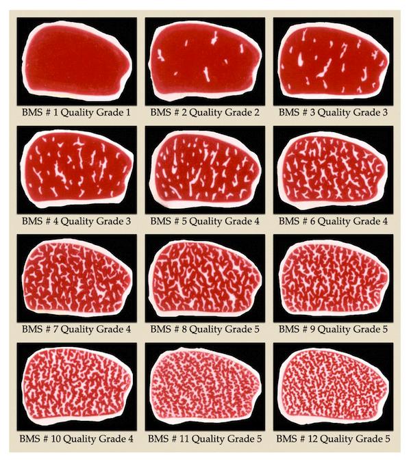 Beef marbling grades - διαβαθμίσεις κατανομής λίπους στους μυϊκούς ιστούς