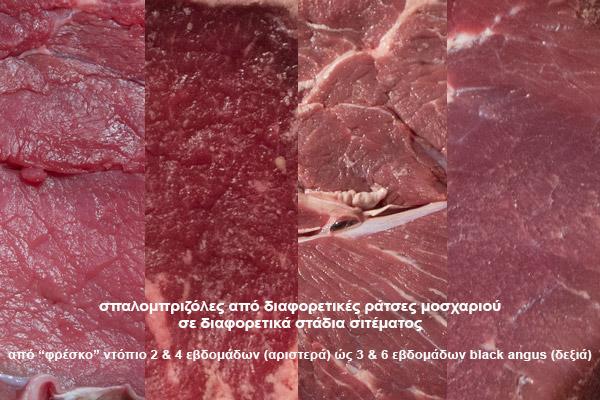 σπαλομπριζόλα - χρώμα και υφή διαφορετικών σιτεμένων κρεάτων
