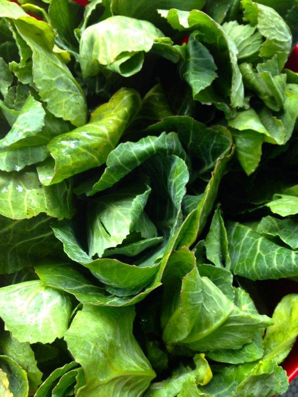 παραπούλια - συνταγή στριφτόπιτα τραγανή