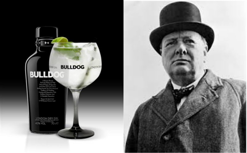 bulldog - Winston-Churchill