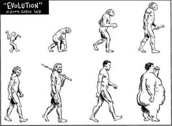 paleo εξέλιξη