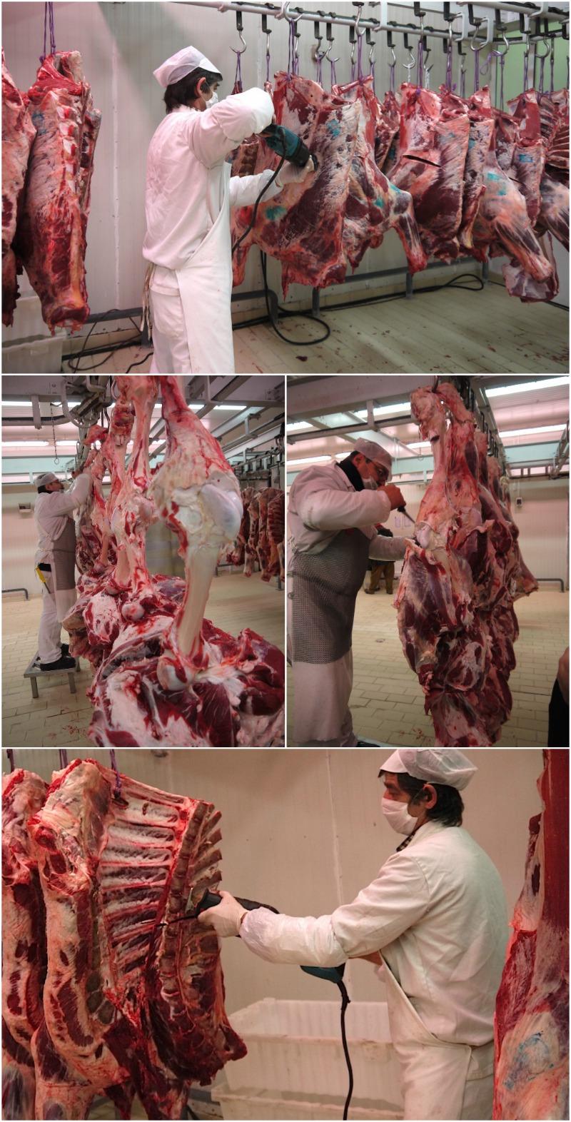 νωπό κρέας - πρώτος τεμαχισμός