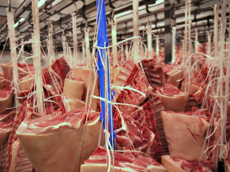 συσκευαστήριο νωπού κρέατος Βερόπουλος - ψυκτικοί θάλαμοι - χοιρινά 1