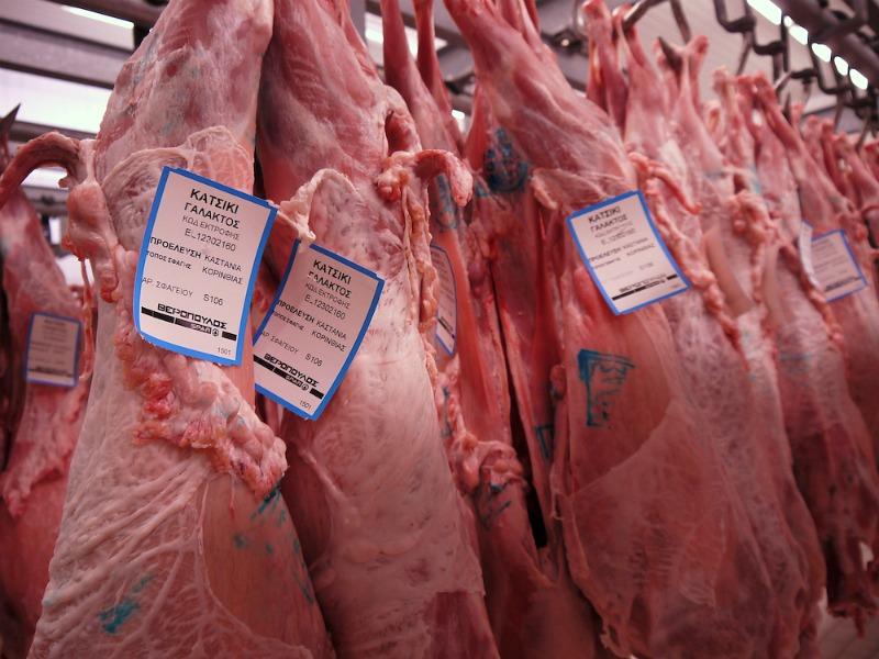 Ψυκτικοί θάλαμοι κρέατος (συσκευαστήριο Βερόπουλος) 23
