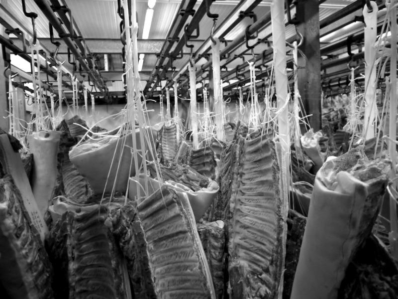 Νωπό κρέας - Ψυκτικοί θάλαμοι κρέατος (συσκευαστήριο Βερόπουλος)
