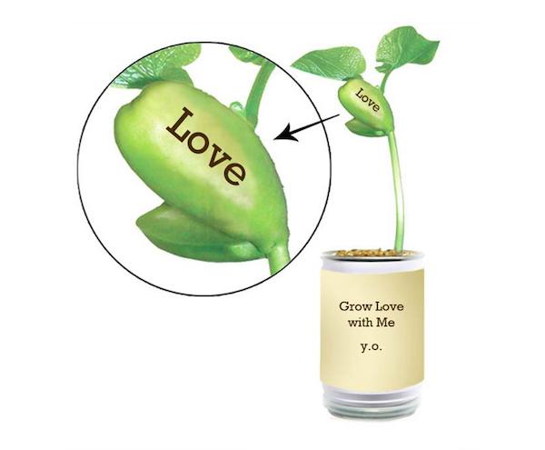 Yoko Ono, Grow Love with Me, Serpentine Gallery-fresh green beans recipe