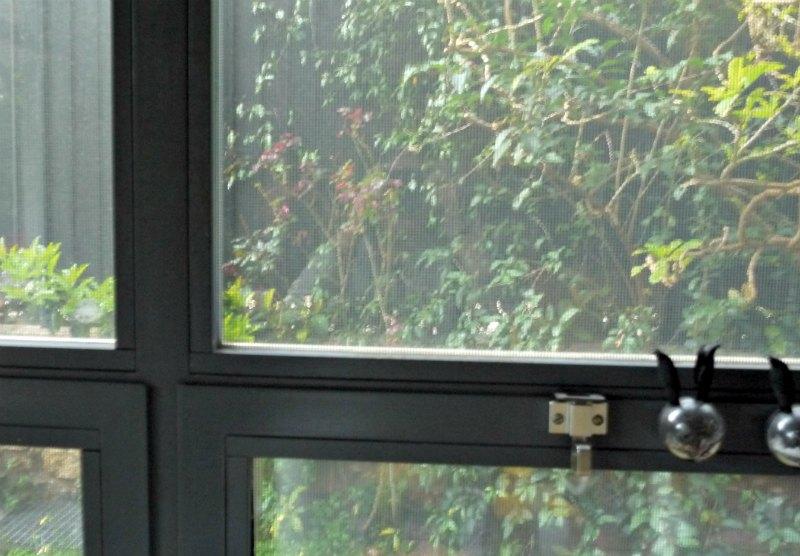 θέα απ' το παράθυρο - γρανίτα λεμόνι με ή χωρίς αλκοόλ