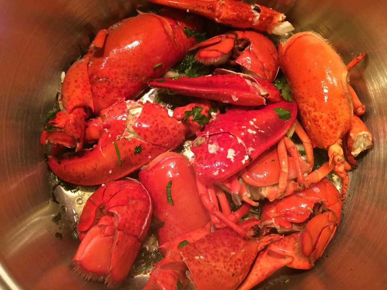 astakomacaronada-lobster-pasta-3