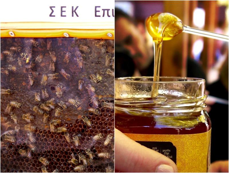 Οι καρποί της αργολικής γης στο Φουγάρο - μέλι και μέλισσες