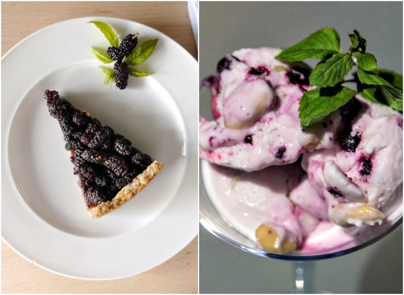 τάρτα με μούρα και παγωτό γιαούρτι