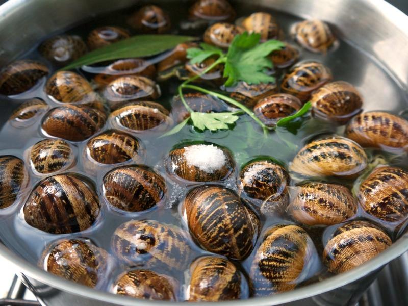 σαλιγκάρια για βράσιμο