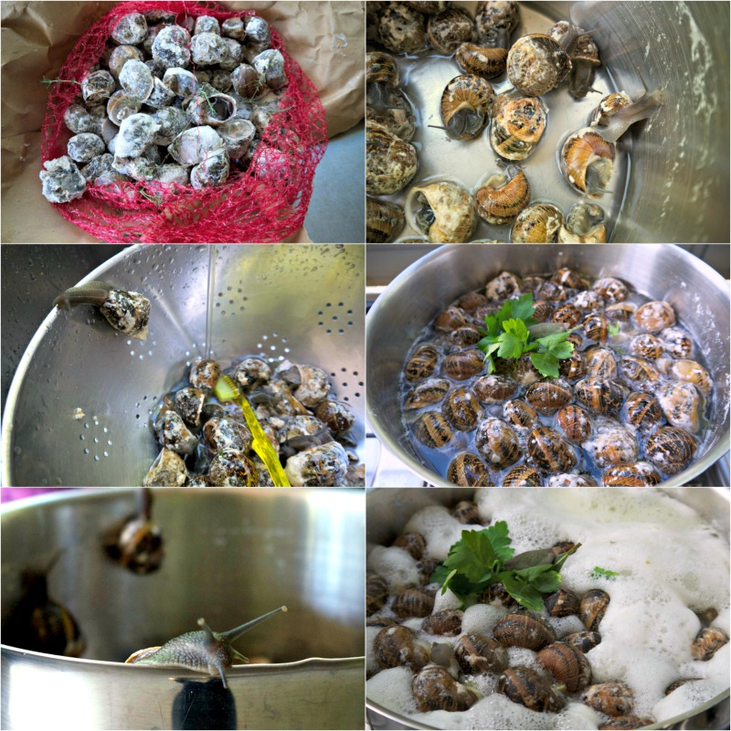 σαλιγκάρια κοκκινιστά (γιαχνί)