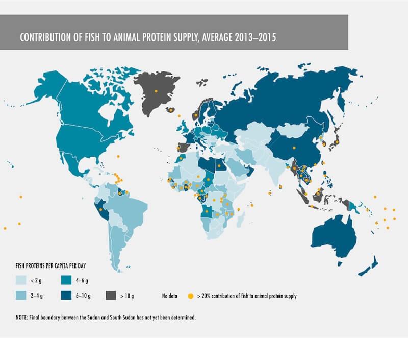 Συμβολή των ιχθύων στην προσφορά ζωικών πρωτεϊνών, κατά μέσο όρο 2013-2015
