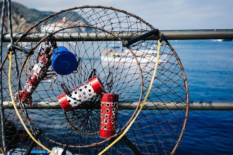 Αλιεία & περιβάλλον