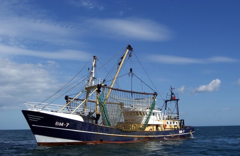 Συλλεκτική-ελεύθερη αλιεία - Μεγάλο αλιευτικό σκάφος