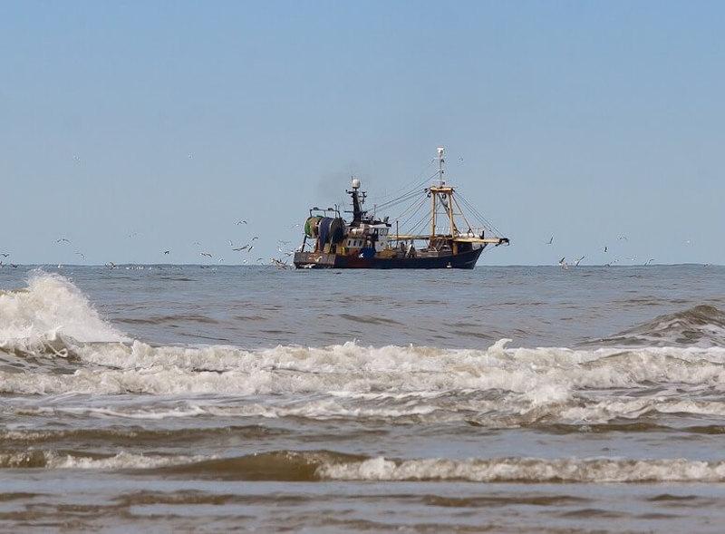 Αλιεία & περιβάλλον - Μεγάλο αλιευτικό σκάφος