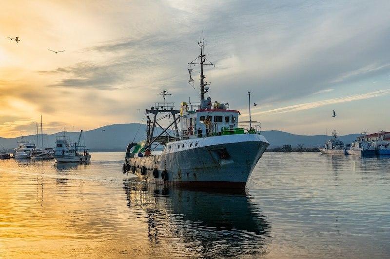 Αλιεία & περιβάλλον - Βιομηχανική αλιεία