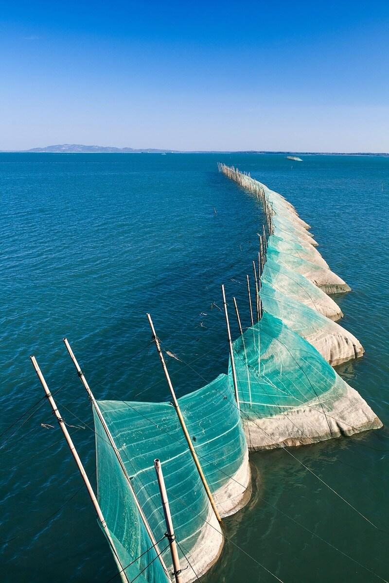 Αλιεία & περιβάλλον - δίχτυα