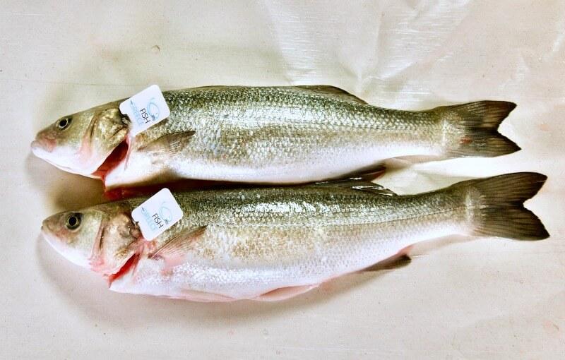 Λαβράκια ποιοτικής ελληνικής ιχθυοκαλλιέργειας Fish from Greece