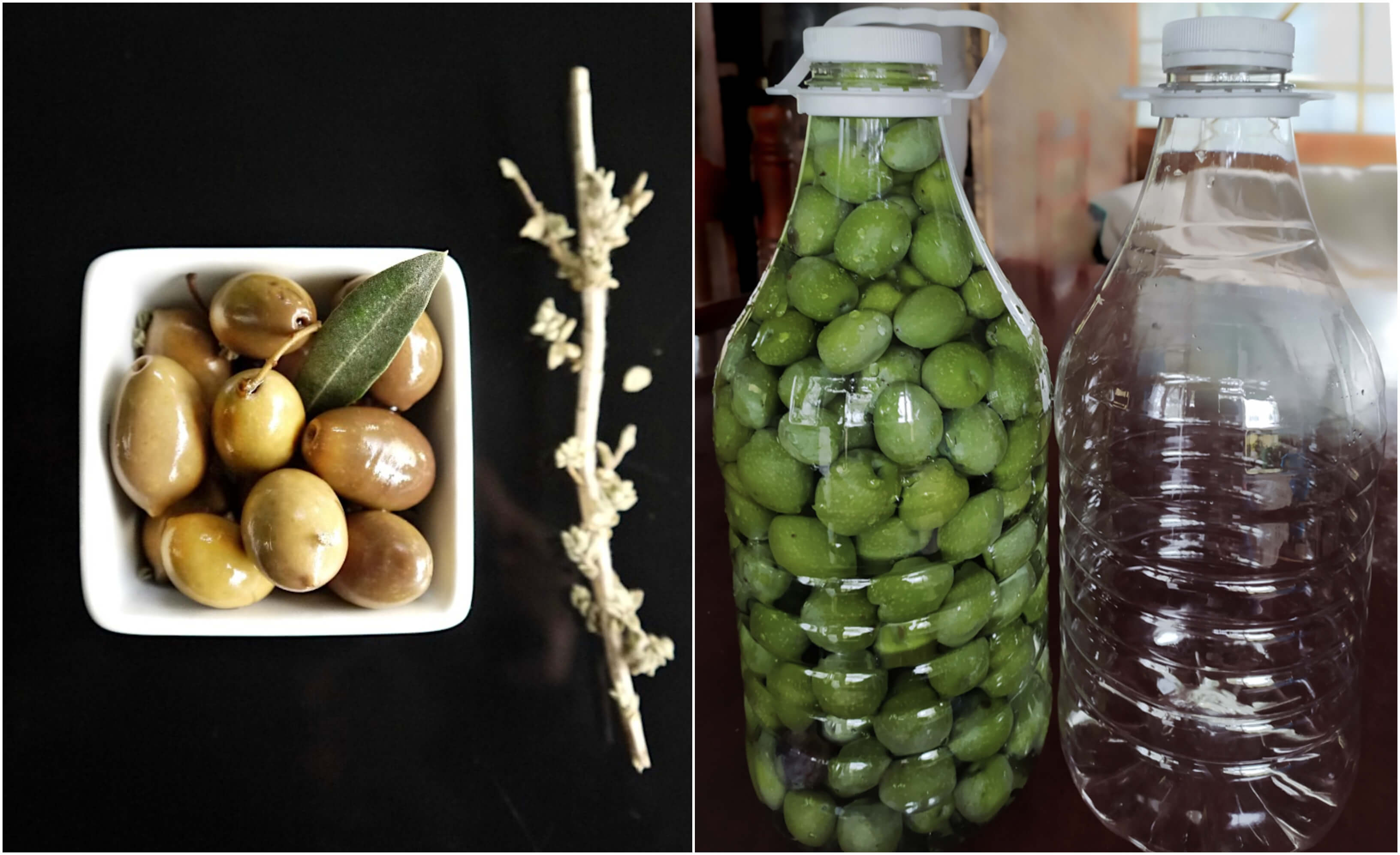 Πράσινες ελιές στο μπουκάλι